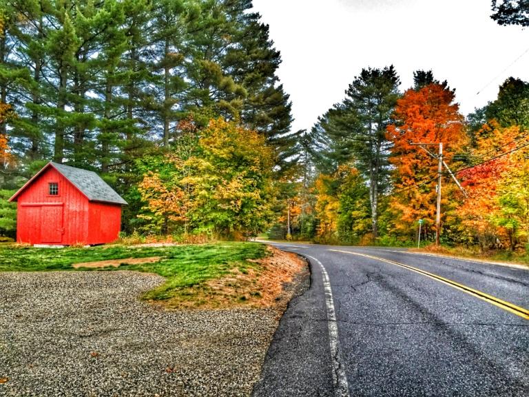 Meadow Wind Road.jpg